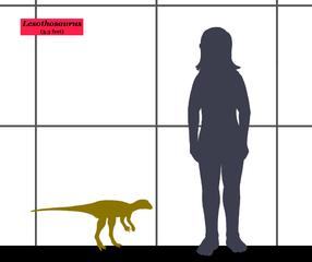 tamaño de los dinosaurios más pequeños
