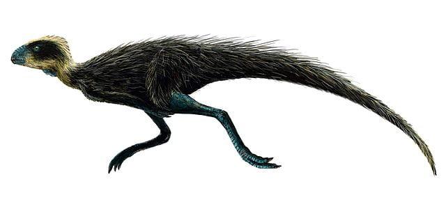 pequeños dinosaurios extintos