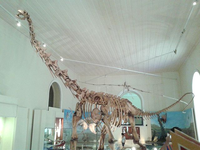 dinosaurios con más fuerza