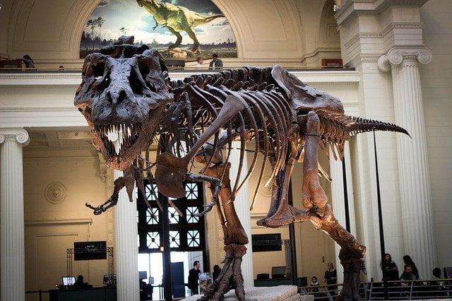 tiranosaurio extinto