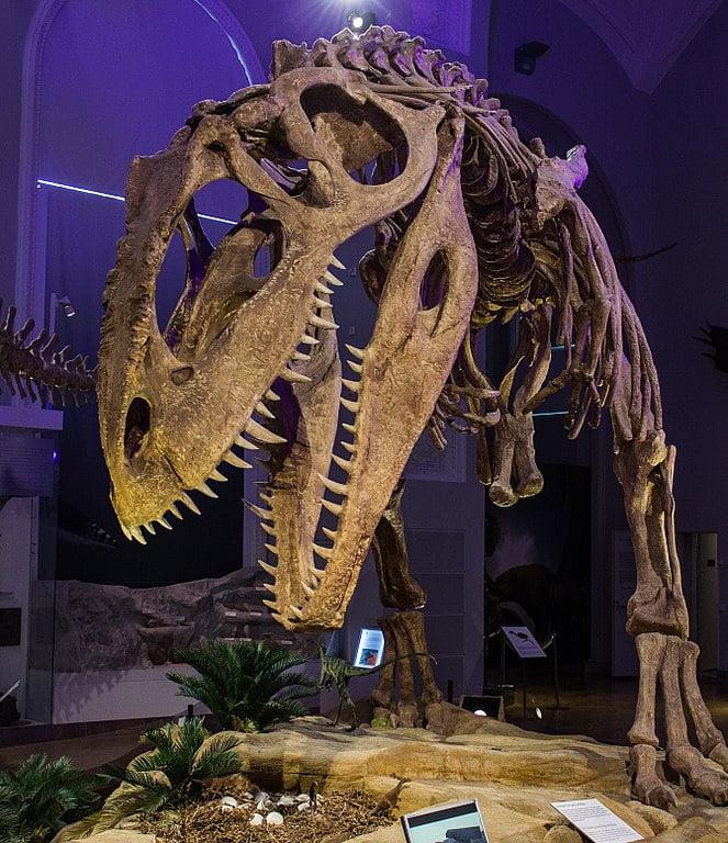los dinosaurios más grandes que existen